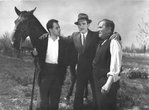 blog El último caballo