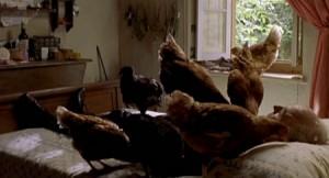 blog Carne de gallina