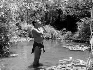 blog O Tarzan do quinto esquerdo